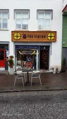 Reykjavik'de Viking temalı oldukça fazla hediyelik eşya dükkanı göreceksiniz.