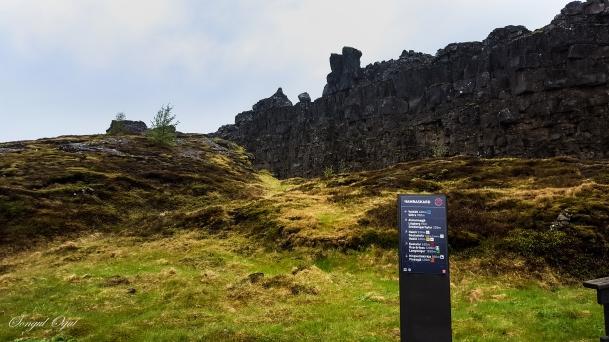 Thingvellir Ulusal Parkı'ındaki tektonik levhalar. İzlanda her yıl tam olarak buradan ikiye ayrılıyor ve gelecekte iki ayrı ada parçası olacak.